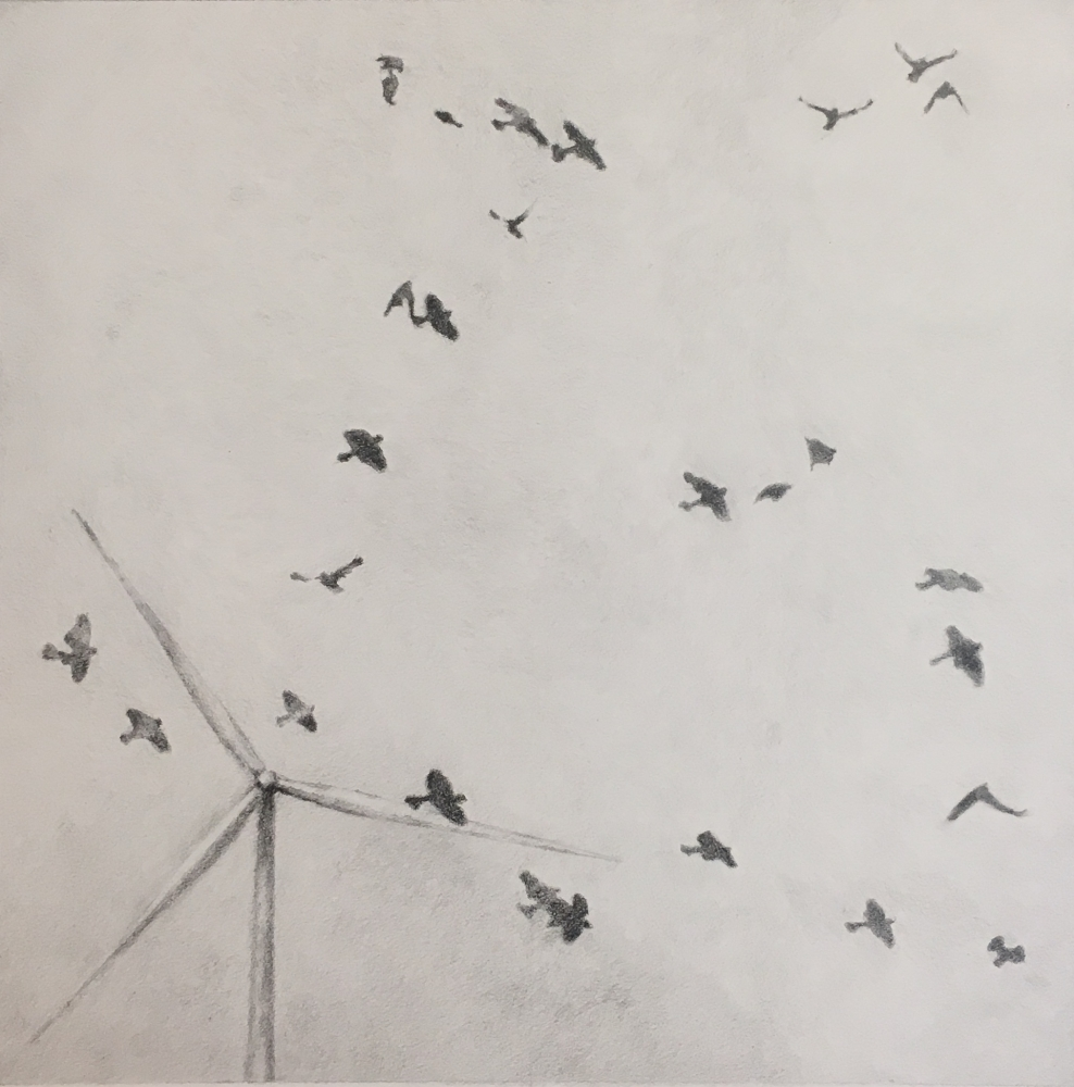 Grpahite drawing of birds flying